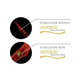 Collagène Hydrolysé Verisol®