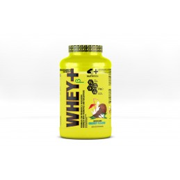WHEY+ with Proβios Matrix